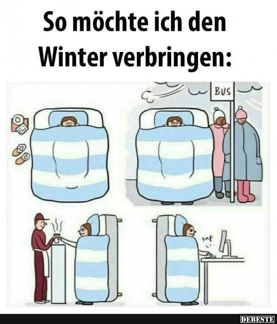 so m chte ich den winter verbringen lustige bilder spr che witze echt lustig. Black Bedroom Furniture Sets. Home Design Ideas