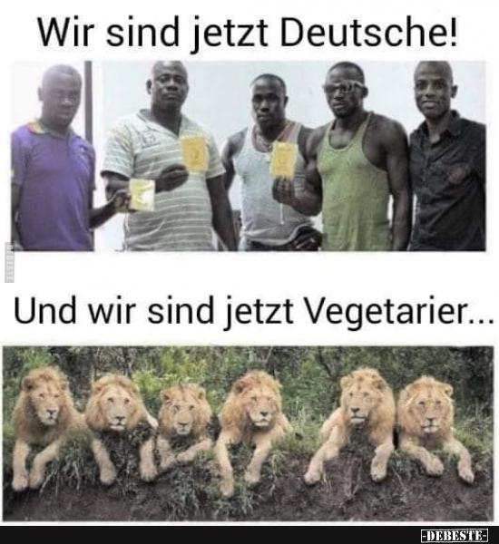 Funny Bilder Deutsch
