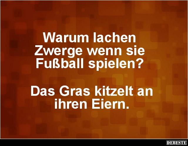 Warum lachen Zwerge wenn sie Fußball spielen? | Lustige Bilder