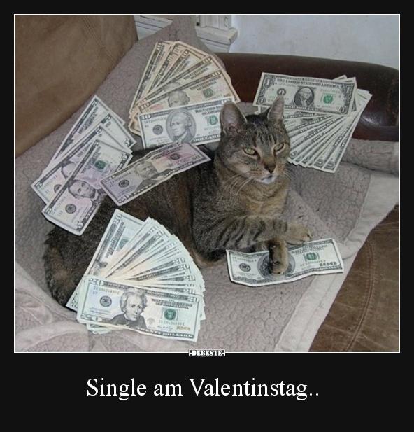 Single Am Valentinstag Lustige Bilder Spruche Witze Echt Lustig