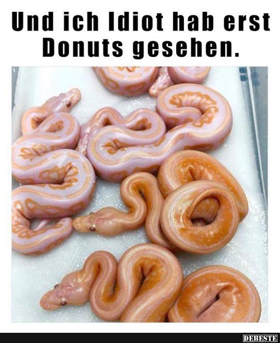 donut sprüche donuts Witze und Sprüche   DEBESTE.de donut sprüche