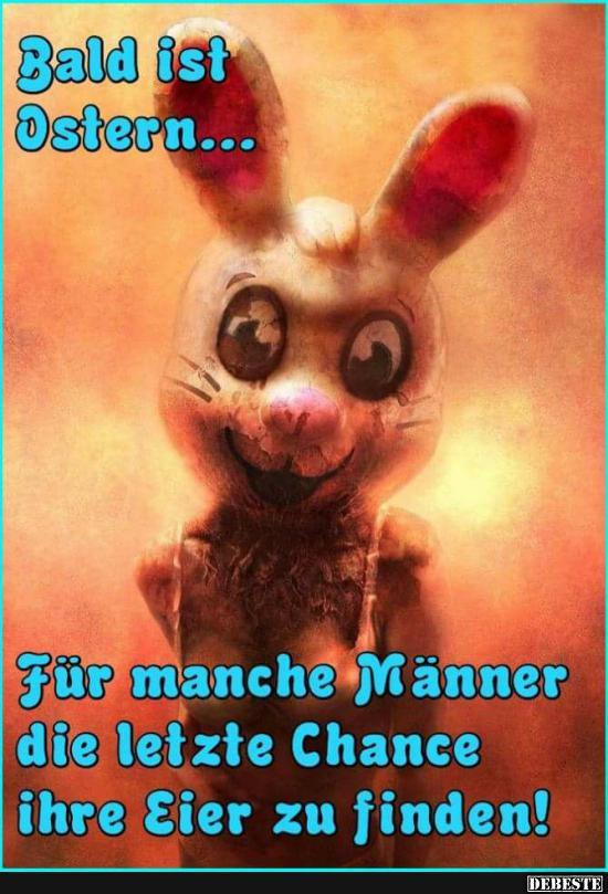 Bald Ist Ostern Lustige Bilder Sprüche Witze Echt Lustig