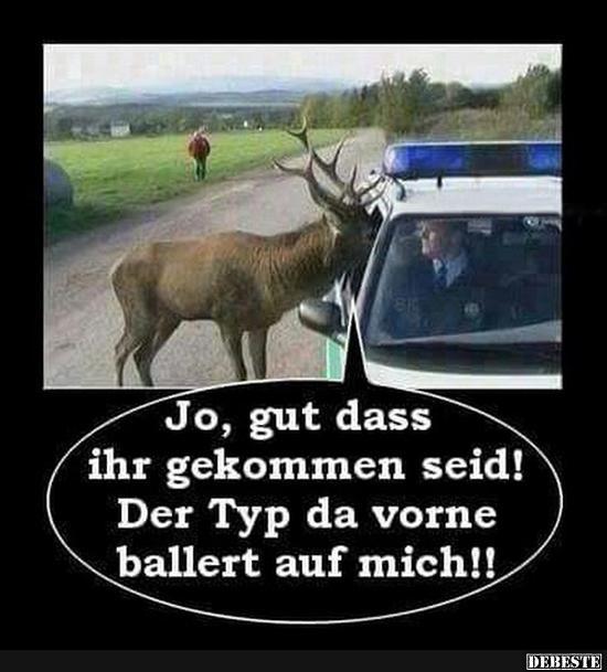 Polizei Dein Freund Und Helfer Lustige Bilder Spruche Witze