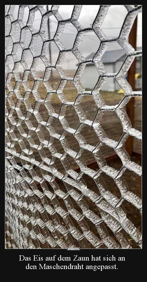 Das Eis Auf Dem Zaun Hat Sich An Den Maschendraht Lustige Bilder