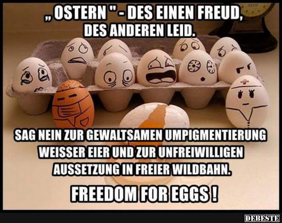 Ostern Des Einen Freud Des Anderen Leid Lustige Bilder