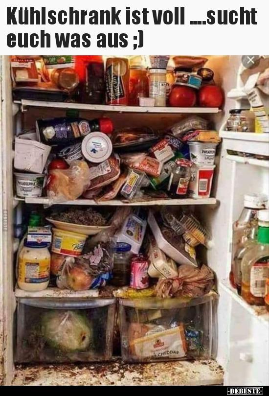 Du Schläfst Gerade Im Kühlschrank