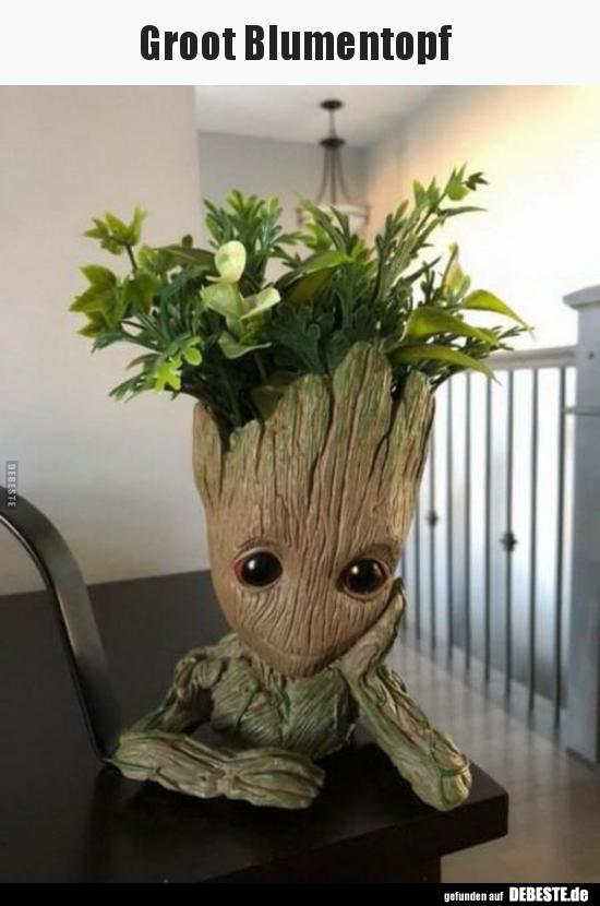 Groot Blumentopf