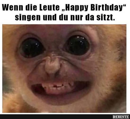 Wenn Die Leute Happy Birthday Singen Und Du Nur Lustige Bilder