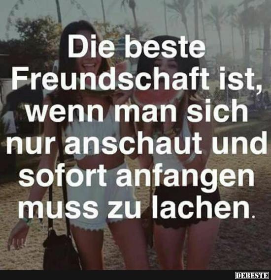 Die beste Freundschaft ist, wenn man sich nur anschaut