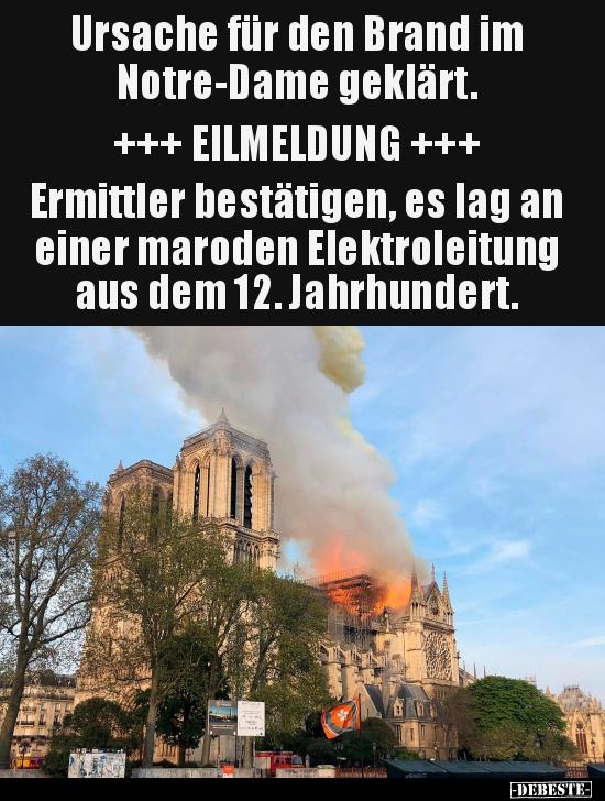 Ursache Fur Den Brand Im Notre Dame Geklart Lustige Bilder
