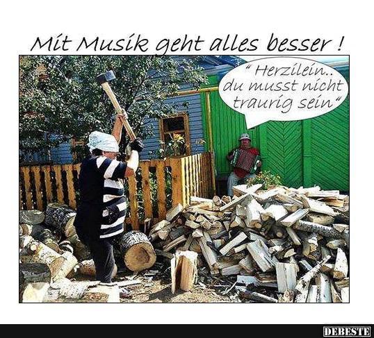 lustige musik sprüche Mit Musik geht alles besser !   Lustige Bilder, Sprüche, Witze  lustige musik sprüche