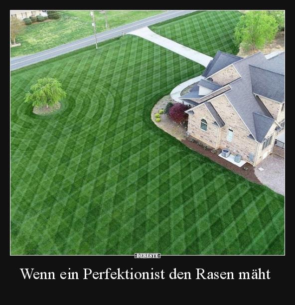 Wenn Ein Perfektionist Den Rasen Maht Lustige Bilder Spruche
