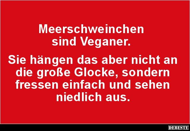 Meerschweinchen Sind Veganer Lustige Bilder Spruche Witze