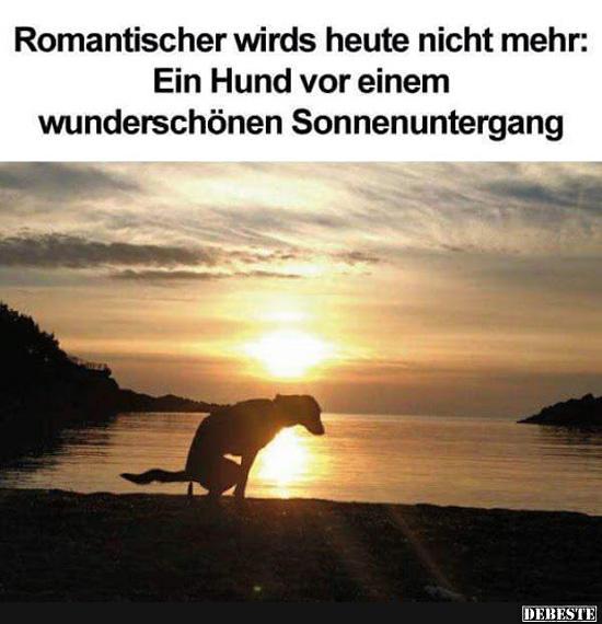 Sprüchen romantischen bilder mit 55 Kostenlose