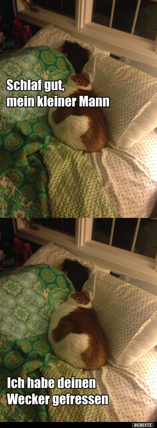 Schlaf Gut Mein Kleiner Mann Lustige Bilder Sprüche