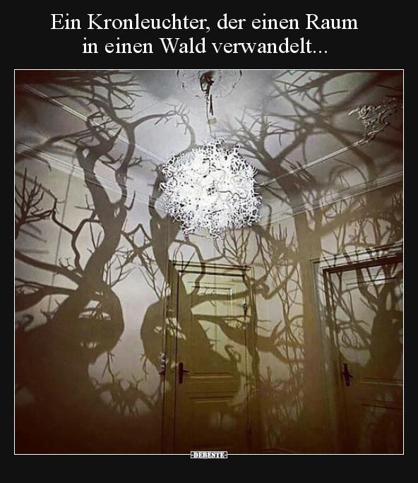 Ein Kronleuchter Der Einen Raum In Einen Wald Lustige