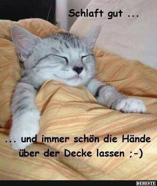 Schlaft Gut Und Immer Schön Die Hände über Der Decke