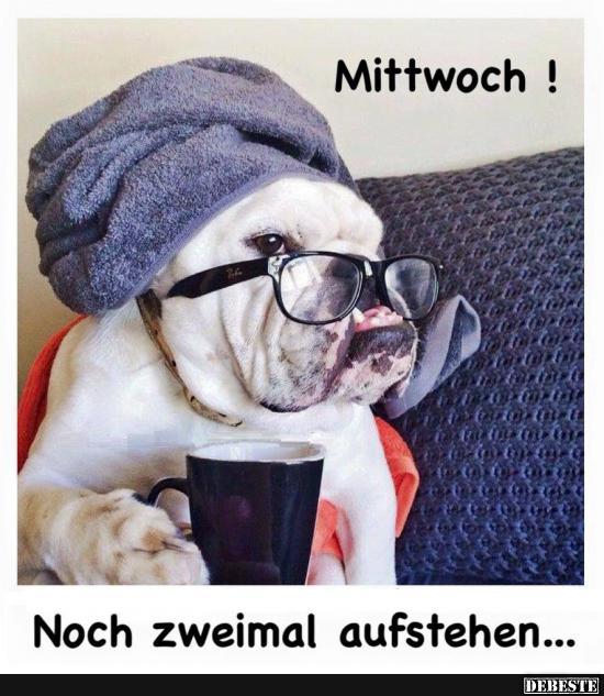lustige mittwoch sprüche Mittwoch! | Lustige Bilder, Sprüche, Witze, echt lustig lustige mittwoch sprüche