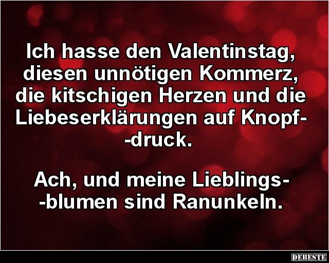 Ich Hasse Den Valentinstag Diesen Unnotigen Kommerz Lustige