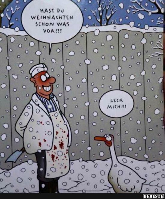 hast du weihnachten schon was vor  lustige bilder