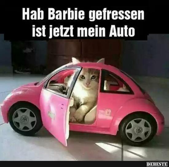hab barbie gefressen ist jetzt mein auto lustige bilder spr che witze echt lustig. Black Bedroom Furniture Sets. Home Design Ideas