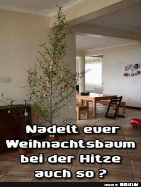 weihnachtsbaum lustige bilder lustig foto. Black Bedroom Furniture Sets. Home Design Ideas