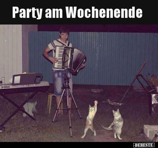 Party Am Wochenende Lustige Bilder Spruche Witze Echt Lustig