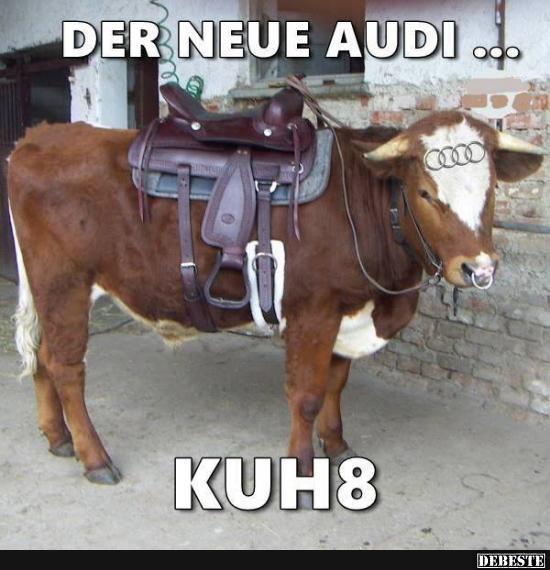 Der neue Audi.. | Lustige Bilder, Sprüche, Witze, echt lustig