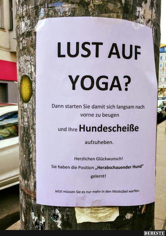 Lust Auf Yoga Lustige Bilder Spruche Witze Echt Lustig
