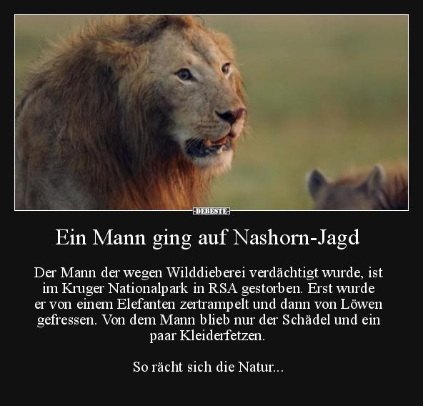 Ein Mann Ging Auf Nashorn Jagd Lustige Bilder Spruche Witze