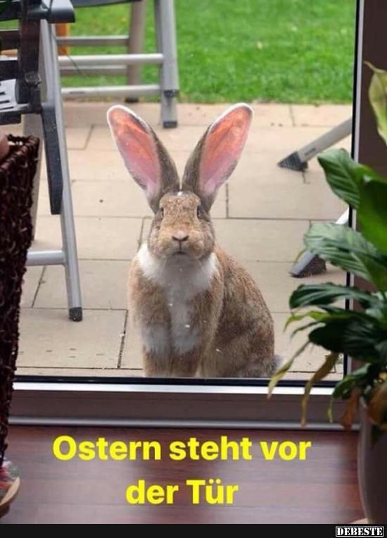Ostern Steht Vor Der TГјr Lustig