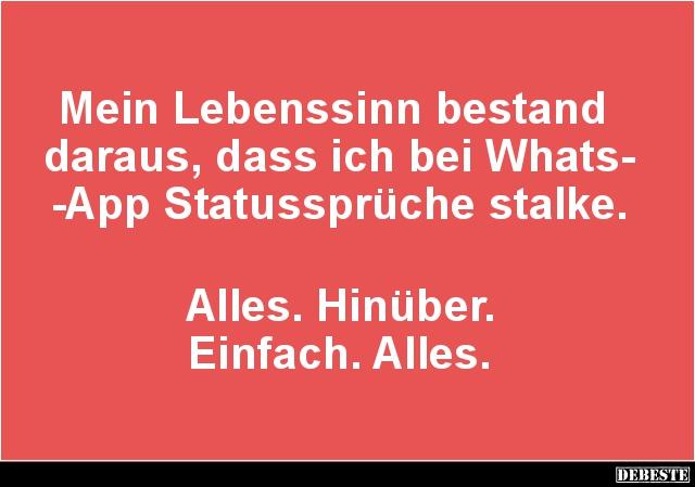 Mein Lebenssinn Bestand Daraus, Dass Ich Bei WhatsApp Statussprüche Stalke.