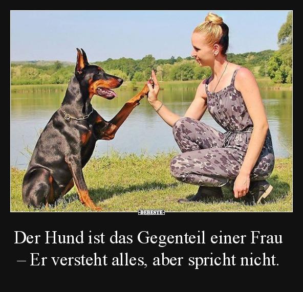 Der Hund ist das Gegenteil einer Frau.. Er versteht alles