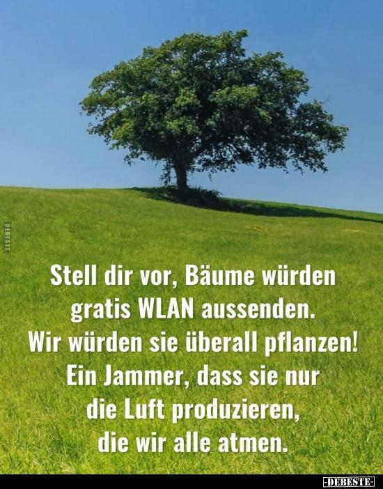 Stell Dir Vor Bäume Würden Gratis Wlan Aussenden