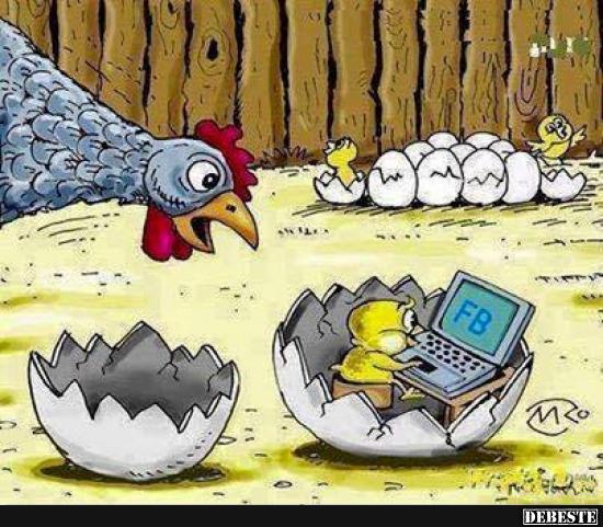 Ostern Geht Auch Sehr Schön Ohne Fb Lustige Bilder Sprüche