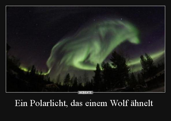 Ein Polarlicht Das Einem Wolf ähnelt Lustige Bilder