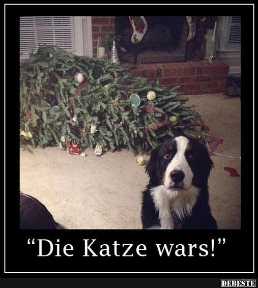 Witzige Spr He Mit Tieren Spruch Website
