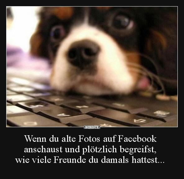 Wenn Du Alte Fotos Auf Facebook Anschaust Und Plotzlich Lustige