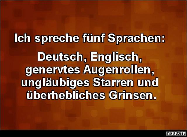 sprüche deutsch englisch lustig Ich spreche fünf Sprachen: Deutsch, Englisch.. | Lustige Bilder  sprüche deutsch englisch lustig