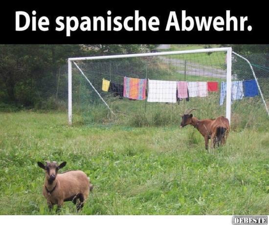 Spanische Sprüche Lustig