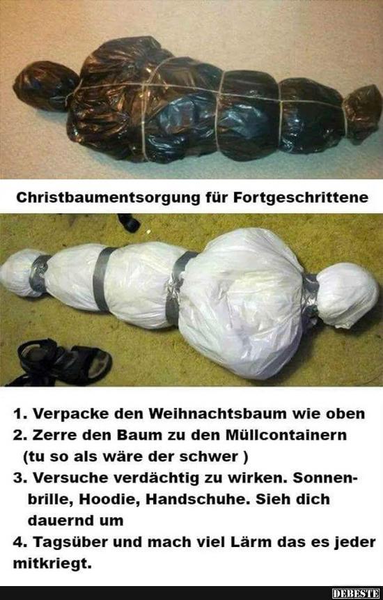 Tannenbaum Wegwerfen.Christbaumentsorgung Für Fortgeschrittene Lustige Bilder