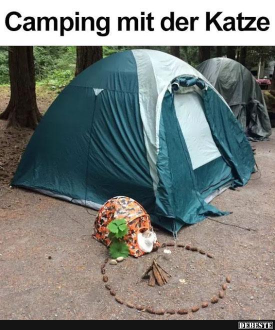 Camping Mit Der Katze Lustige Bilder Spruche Witze Echt Lustig