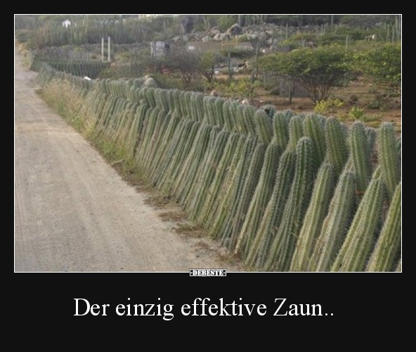 Der Einzig Effektive Zaun Lustige Bilder Spruche Witze Echt