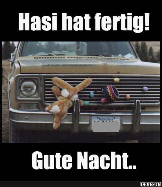 Hasi Hat Fertig Gute Nacht Lustige Bilder Spruche Witze Echt